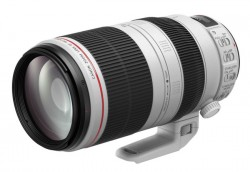 Canon EF 100-400mm f/4.5-5.6 L IS II USM [9524B005AA]