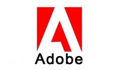 Adobe Acrobat DC Standard CC PL WIN GOV - odnowienie na rok