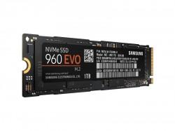 Samsung 960 Evo M.2 1TB [MZ-V6E1T0BW]